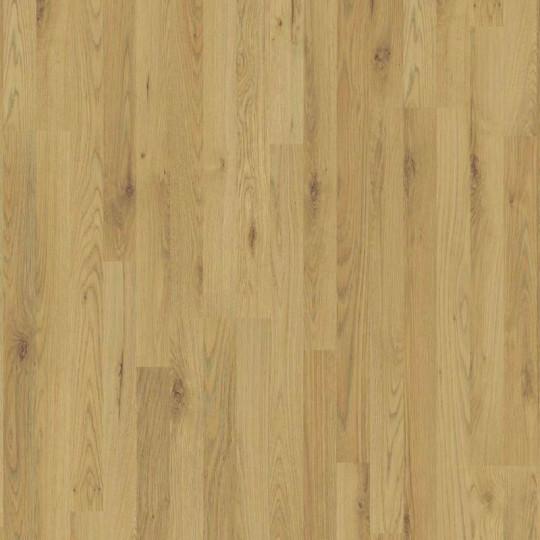 Ламинат Eurowood (Евровуд) Basic 45318/0003 Дуб Натуральный