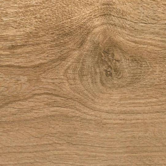Ламинат Floorwood (Флорвуд) Optimum (Оптимум) 491 Дуб Белый